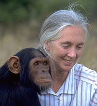 Quotations 3 Jane Goodall and Chimp friend