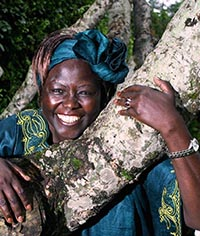 Quotations 4 Wangari Maathai Muta